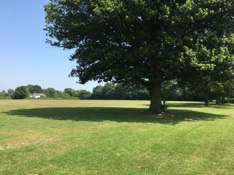 Sandhurst Playing Fields